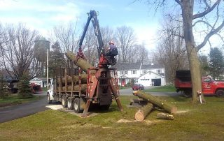 Man placing log with Greater Heights Tree Care Equipment