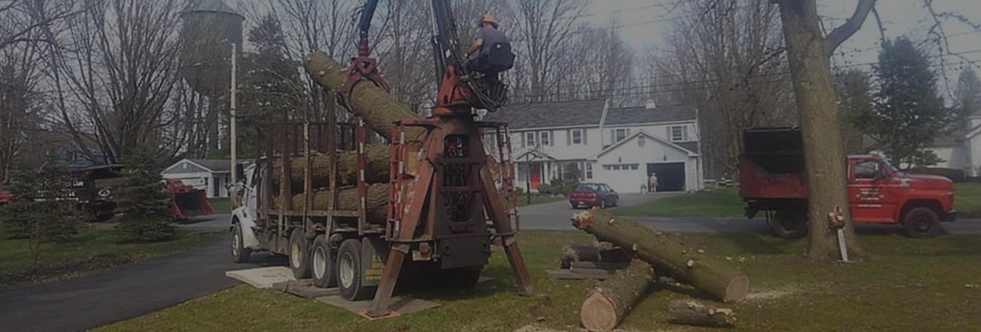 Man placing logs into Greater Heights Tree Care Equipment